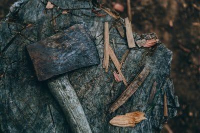 usunięcie drzew lub krzewów